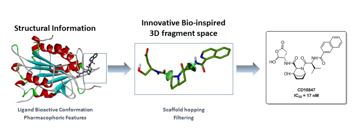 Discovery of a novel Caspase-1 Inhibitor Scaffold hopping from 3D-fragments inspired by natural products